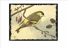 Lúgano Vintage Placa de pared jaula pájaro imagen Sluis aviario signo