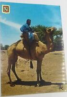 Rare Vintage Postcard - No. 26 Sahara Tipico, Africa