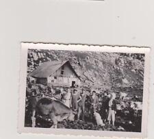 PHOTO ANCIENNE-VIEILLE FERME CHALET-  VACHES- PERSONNAGES- CHIEN