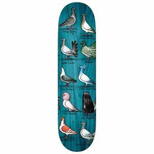 "Antihero Tony Trujillo Show Pigeons Skateboard Deck 8.5"" New w/ Free Shipping!"