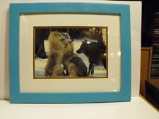 """Group Hug"" Timber Wolves Montana Signed & Framed Photograph by Richard Jackson"