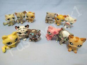 Littlest Pet Shop Lot 3 Random Blemished Kitten Cats Shorthair Persian Authentic