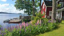 Ferienhaus Süd Schweden Traumhaft direkt am See ideal f. Angler Wandern,Golfen