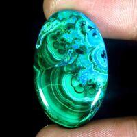Malachite Chrysocolla Brilliant Designer 36.80 Ct 100% Natural Cabochon Gemstone