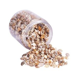 About 1300-1500 Tiny Sea Shell Ocean Beach Spiral Seashells Craft Charms 7-12mm
