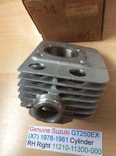 Genuine Suzuki GT250EX (X7) 1978-1981 NOS Cylinder RH Right 11210-11300-000 NEW