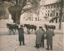 Hippodrome de Longchamp 1955 - Vente de Chevaux - PR 1261