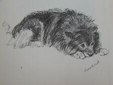 Lucy Dawson 1937 Keeshond Dog Print Print 31882 Vintage Johnnie
