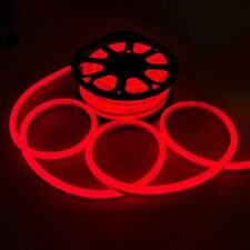 DELight® 50' FT Red LED Neon Rope Light Home/Outdoor Holiday Decoration 110V