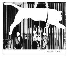John Baldessari Tiger With No Stripes collectable poster 2017