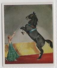 Vintage 1935 Trade Card of PAULA BUSCH - CIRCUS BUSCH Stallion Act