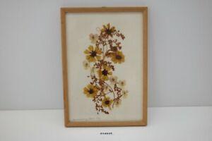alt DDR Wandbild Gräßer getrocknet HV Hemmerling Vogel Collagen Blüten #214935