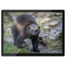 Quickmat Plastic Placemat A3 - Black Wolverine Animal  #16843