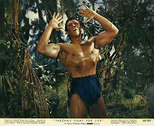 Gordon Scott - Tarzan's Fight for Life (1958) - 8 1/2 X 11