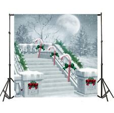 10x10ft Backdrop Christmas Scene Stairs Background Photography Prop Scene Studio