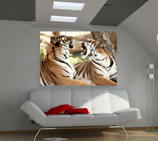 Tigers large giant animals poster print photo mural wall art ia562