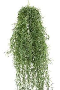 75cm GREEN HANGING SPANISH MOSS - ARTIFICIAL, FAKE, DIY CRAFT, DECOR, WALL PLANT