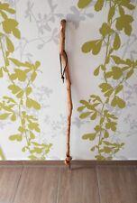 Wanderstock Wanderstab Spazierstock Bergstock Pilgerstock Holz 107cm