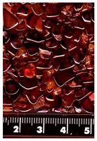 50 ct  beautiful color natural Australia GARNET GEMS lapidary discount gem SALE