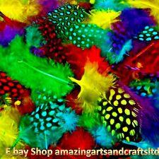 Spotted coloridas plumas Craft sombreros atrapasueños artesanías Colores Surtidos 14g