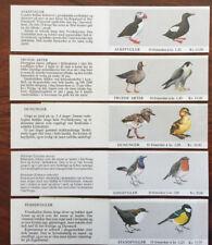 NORGE, Birds, Booklets,Alkefugler,Trude Arter,Dununger,Sandfluger,Standfugler