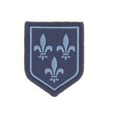 Ecusson G.N. Région Ile de France Basse Visibilité Bleu