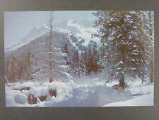 Anchorage Alaska Mt. Alyeska In Moonlight Girdwood Valley Vintage Postcard 1960s