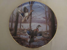 MISTY MORNING REVISITED - WOOD DUCKS collector plate DAVID MAASS Woodduck