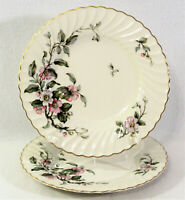 Syracuse China 2 Dinner Plates Apple Blossom Gold Trim Swirl Edge USA
