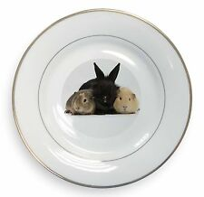 Rabbit and Guinea Pigs Print Gold Rim Plate in Gift Box Christmas Presen, AR-9PL