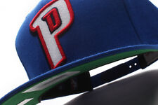 Detroit Pistons Mitchell & Ness (NT78Z TPC 5PISTO) Solid Snapback Hat