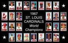 1967 St Louis Cardinals World Series Baseball Card Poster Print Decor Art Gift