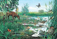 Marsh & Peatland 1000 Piece Jigsaw Puzzle