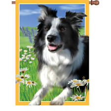 """Lacy the Border Collie Brilliance House (28"""" x 40"""" approx) Flag ..10... PR 52524"""