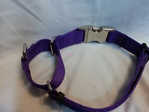 Training Martingale Style Dog Collar Metal Buckle Small To X Large