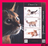 KYRGYZSTAN 2019 Nature Fauna Domestic Animals Pets Cats s-s Mi KEP Bl.35(125-127