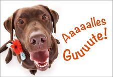 """Kühlschrank Magnet Magnete zum Geburtstag Hund Labrador mit Blume """"Alles Gute""""!"""