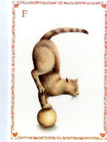 French Postcard Ginger Cat Kitten Ball Frank Alphabet Letter F Name Surname Card