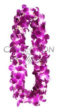 Fresh Graduation Orchid Leis - Double Strand Leis (Sonnia Natural)