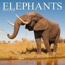 Elephants Calendar 2022 Safari Wall 15% OFF MULTI ORDERS!