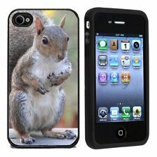 Squirrel For Apple iPhone 4 or 4s Case / Cover All Carriers