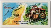 Portuguese Madeira Island Bullock Sleigh Transport Vintage Ad Trade Card