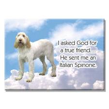 Italian Spinone True Friend From God Fridge Magnet No 1