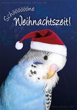 """A6 Postkarte Weihnachtskarte Weihnachten Wellensittich """"Schöne Weihnachtszeit!"""""""
