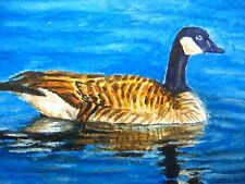 Watercolor Painting Canadian Goose Bird Lake Nature ACEO Art