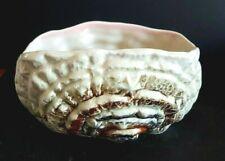 Vintage British Sylvac Shell Planter / Posy Bowl / Vase # 3530 - 17 cm Wide