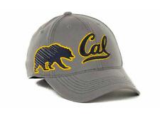 California Univeristy Berkley Golden Bears Men's NCAA Sketched Flex Fit Hat Cap
