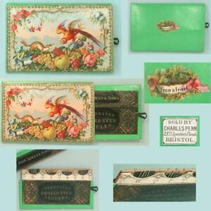 Antique English Pull Out Synoptical Needle Packet Book & Pincushion *Circa 1870
