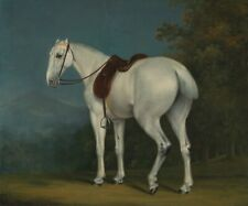"Jacques-Laurent Agasse : ""A Lady's Grey Hunter"" (c.1806) — Giclee Fine Art Print"