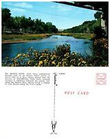 CALIFORNIA Postcard - Mojave River (B8)